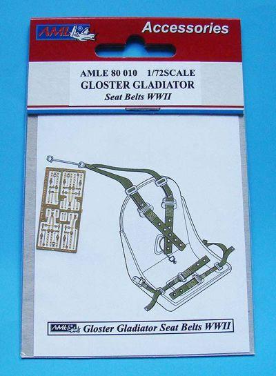 AMLE8010