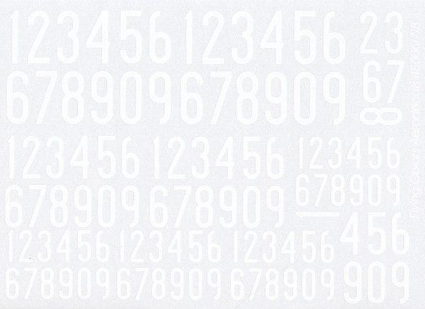 FCA48008