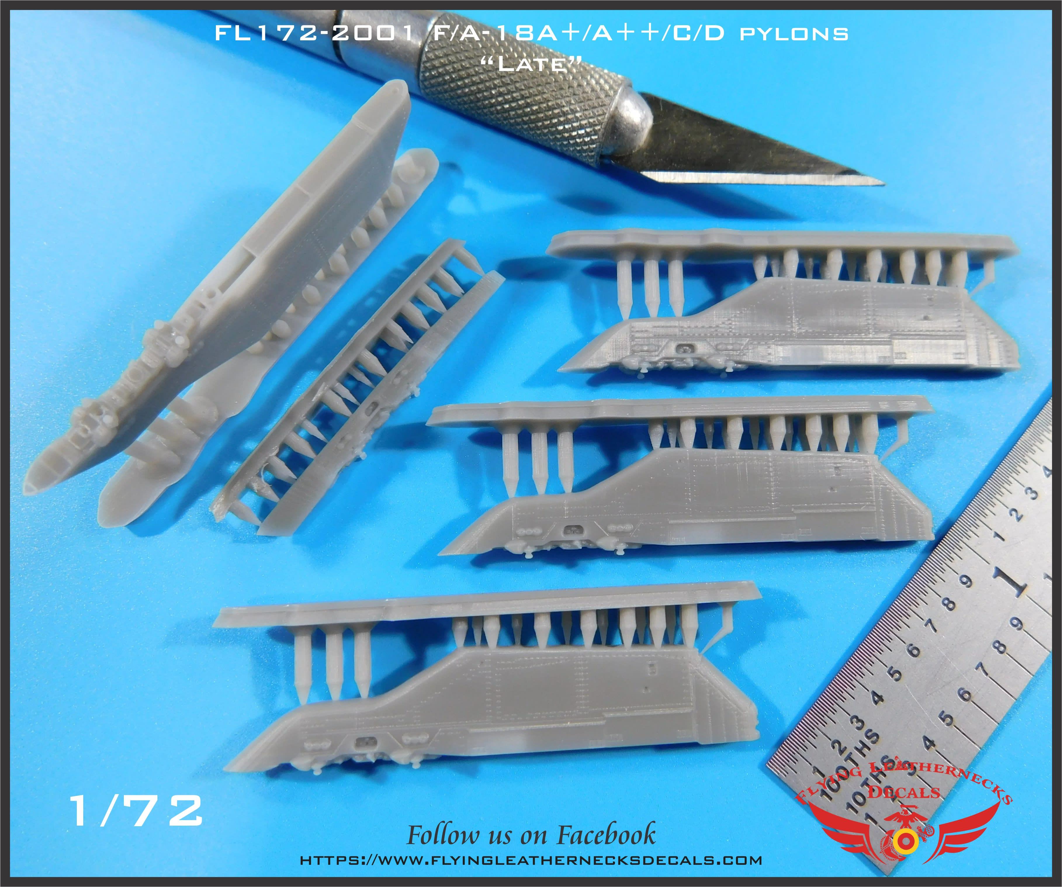 FL172-2001