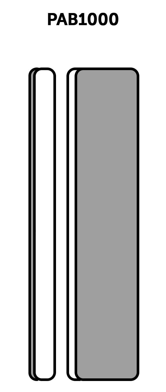 PAB1000
