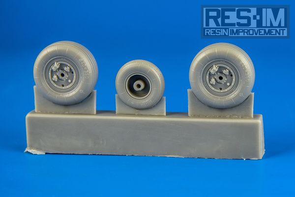 RESIM4810