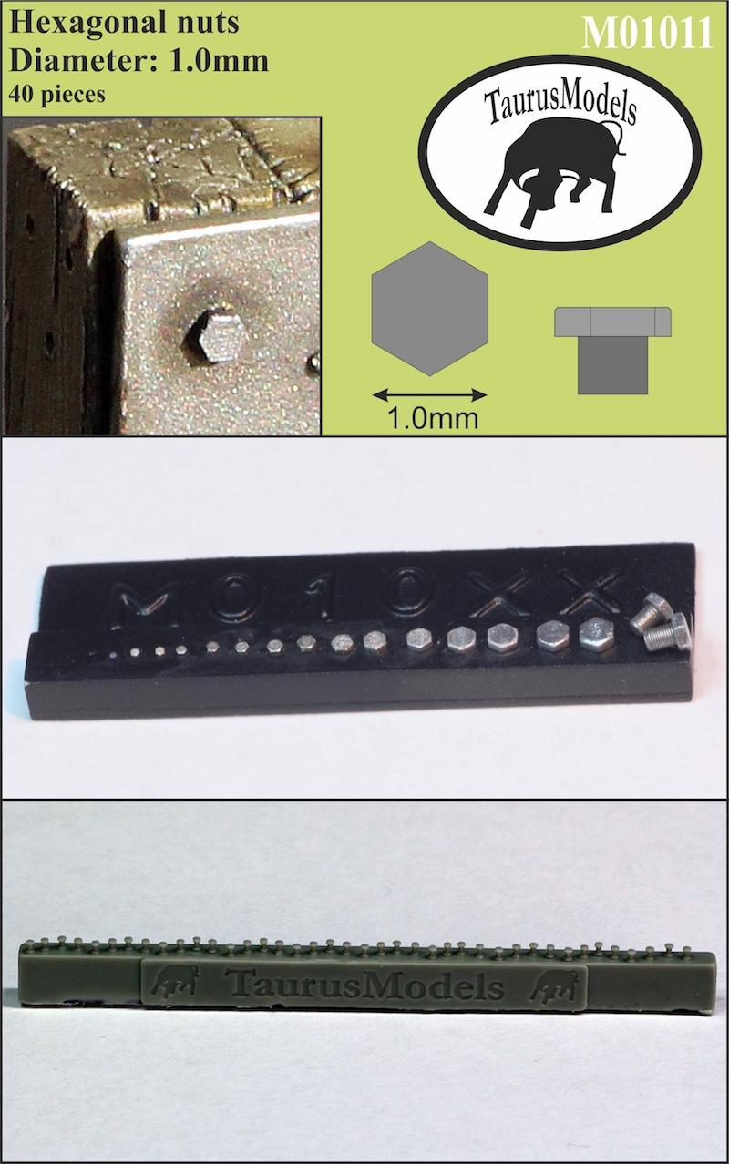 TOMM01011